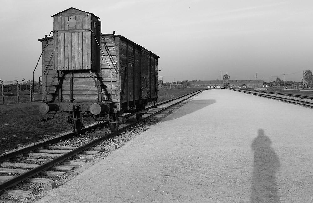 As I Leave - Auschwitz II Birkenau Death Camp