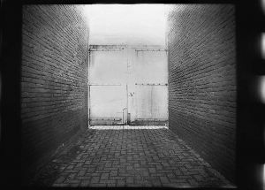 22-One-Way-Out-Homemade-Enlarger-Camera-Paper-Negative.jpg