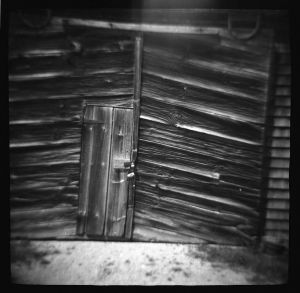 23-Barn-Door-Original-Diana-TMax-400.jpg