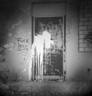26-Welcome-Sign-Canon-6D-with-a-Holga-60mm-Lens.jpg