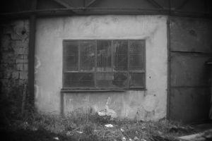 Abandoned Warehouse 6 - Auschwitz I