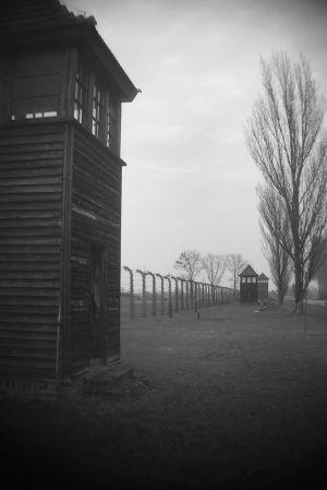 Perimeter - Auschwitz II - Birkenau