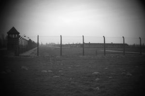 Looking Into Auschwitz II - Birkenau
