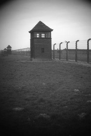 Endless - Auschwitz II - Birkenau