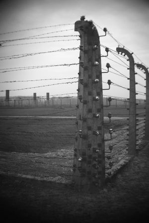 Endless 2 - Auschwitz II - Birkenau