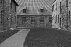 Between Two Blocks - Auschwitz I