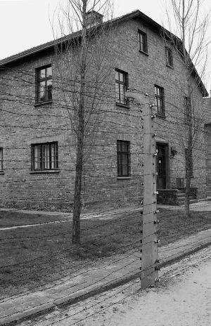 Womens Block - Auschwitz I