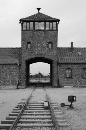 Goodbye To Freedom - Auschwitz II - Birkenau