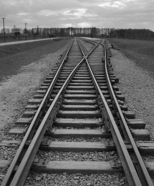 Is Fate Real? - Auschwitz II - Birkenau