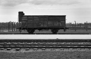 Transport To Birkenau - Auschwitz II - Birkenau