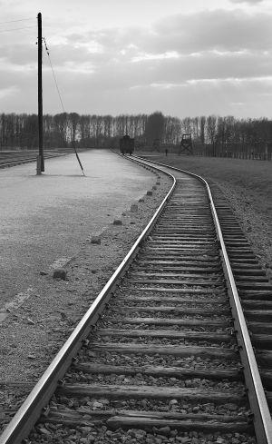 Selection Platform - Auschwitz II - Birkenau