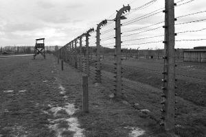 Leaving The Platform - Auschwitz II - Birkenau