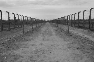 View With No Future - Auschwitz II - Birkenau