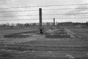 Haunted Ruins - Auschwitz II - Birkenau