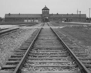 Train View - Auschwitz II - Birkenau