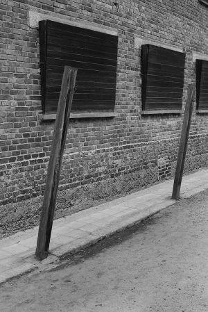 Torture Poles - Auschwitz I