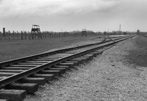 Looking Back - Auschwitz II - Birkenau
