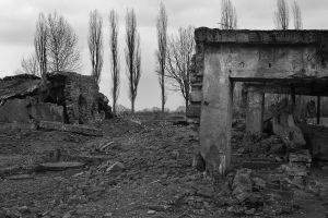 Destroyed Destruction - Auschwitz II - Birkenau