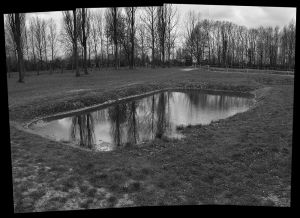 Reflecting Ashes - Auschwitz II - Birkenau