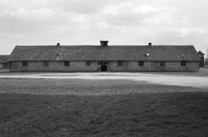 Temporary Home - Auschwitz II - Birkenau