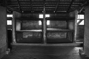 Space For 36 - Auschwitz II - Birkenau