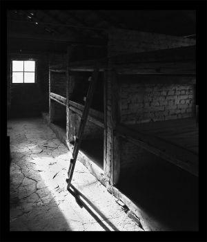 Top Bunk - Auschwitz II - Birkenau