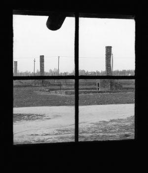 Viewing A Better World - Auschwitz II - Birkenau