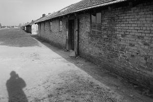 Hiding In The Open - Auschwitz II - Birkenau